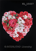 Interlitho, Erica, VALENTINE, photos, heart of roses(KL15657,#V#)