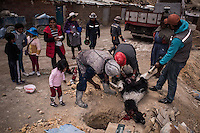 "A group of miners in the process of extracting the heart of a sacrificed llama, in which they will read the future and afterward take inside the mine as an offering to the devil, God of the mine. Potosi, Bolivia. 28 January 2016. The sacrifice of the llama is carried out with the family amongst the children who bear witness of the ceremony as a very natural process. In order to be present during the sacrifice I had to share with the miners and their families for several hours, drinking alcohol and chewing coca leaves./ Un grupo de mineros en el proceso de extraer el corazon de la llama sacrificada, en el cual leeran el futuro para posteriormente llevarlo al interior de la mina y ofrecerlo al diablo, dios de la mina. Potosi, Bolivia. Enero 28 de 2016. El sacrificio de la llama se realiza junto a la familia donde los niños observan con naturalidad el proceso. Para poder estar presente en el sacrificio tuve que compartir por varias horas con estos mineros y sus familias, bebiendo alcohol y masticando hojas de coca. The customs and beliefs of Andean people are a hybrid of catholic religion and old beliefs. One of its highest expressions is within the Bolivian mining culture that worships the Pacha Mama (Mother Earth), the Celestial Divinity personified in the Catholic God and ""El Tio"" of the mine (Satan). To the latter, who rules the underworld, they make offerings with sacrifices of llamas inside the mines to ask for protection in the depths of the mountain and abundant mineral."