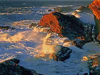 769550429 Sea Stacks at Sunset.Shore Acres SP, Oregon