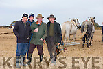Thomas Wharton, Michael Burke, Bosco McMahon and Moss Trant. at the Abbeydorney Ploughing Match at Corridan's Farm, Ballysheen on Monday