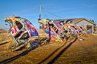 The bug ranch in Conway Texas was inspired by the famous Cadillac Ranch near Amarillo. The idea was to create an attraction to bring business to a roadside curio shop. The shop is gone out of business but the bug ranch has survived.