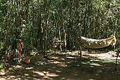 Mato Grosso State, Brazil. Aldeia Metuktire (Kayapo). Roça (plantation) camp.