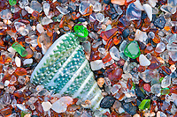 Seashell at Glass Beach. Kauai, Hawaii.