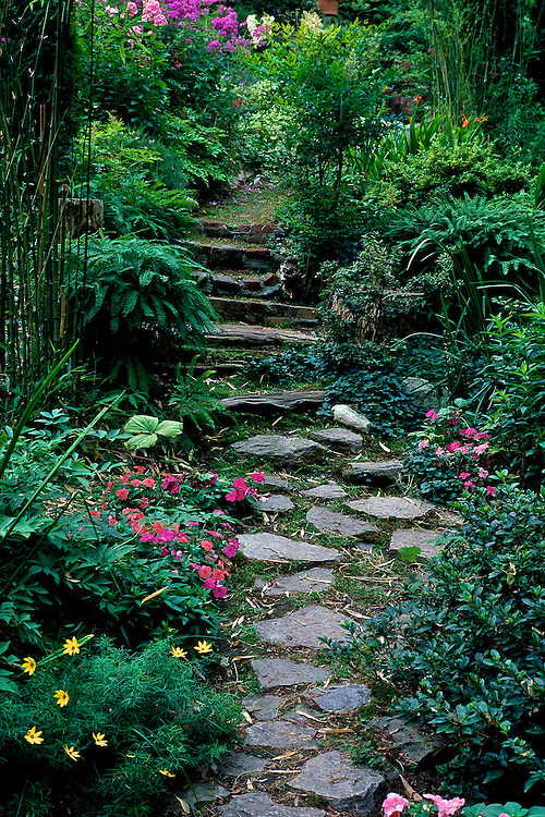Path Of Stepping Stones Through Garden In Spring, Creekside Gardens,  Roberts Creek, Near