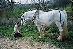 Simon & Sam the Shire horse   Tinker's Bubble, Low impact community,  Somerset