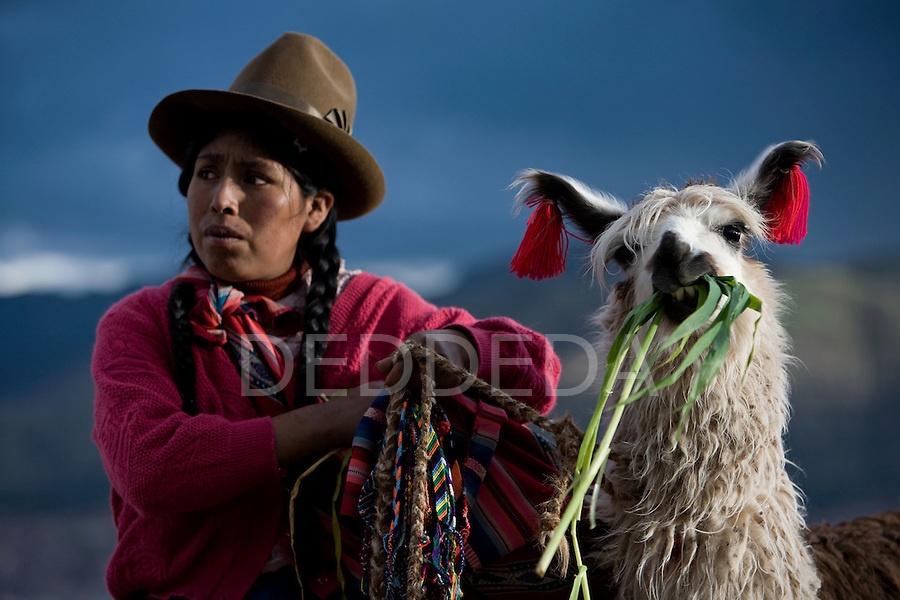 A Peruvian woman dressed in traditional clothing with her llama in Cuzco, Peru.
