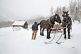 USA, Colorado, Aspen, wrangler Mike Lewindowski gets his horses ready for a sleigh ride, Pine Creek Cookhouse, Ashcroft