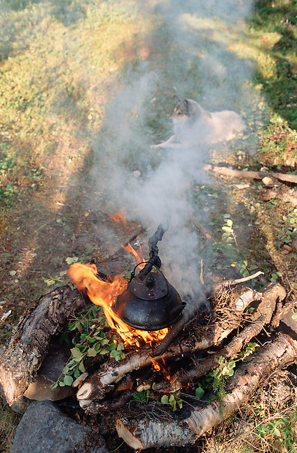 A kettle simmers above a fire at a Sami summer camp near Lovozero. Kola Peninsula, NW Russia.