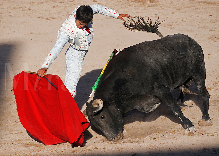 The matador JUAN CHAVEZ fights a bull in the Plaza de Toros - SAN MIGUEL DE ALLENDE, MEXICO ..