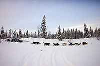 Melanie Goulds team on trail near Finger Lake Chkpt 2006 Iditarod Finger Lake Alaska Winter