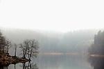 Europa, DEU, Deutschland, Nordrhein Westfalen, NRW, Oberbergisches Land, Hackenberg, Bergneustadt, Aggertalsperre, Morgenstimmung, Winter, Dunst nach Schneefall, Kategorien und Themen, Natur, Umwelt, Landschaft, Jahreszeiten, Stimmungen, Landschaftsfotografie, Landschaften, Landschaftsphoto, Landschaftsphotographie, Wetter, Wetterelemente, Wetterlage, Wetterkunde, Witterung, Witterungsbedingungen, Wettererscheinungen, Meteorologie, Wettervorhersage<br /> <br /> [Fuer die Nutzung gelten die jeweils gueltigen Allgemeinen Liefer-und Geschaeftsbedingungen. Nutzung nur gegen Verwendungsmeldung und Nachweis. Download der AGB unter http://www.image-box.com oder werden auf Anfrage zugesendet. Freigabe ist vorher erforderlich. Jede Nutzung des Fotos ist honorarpflichtig gemaess derzeit gueltiger MFM Liste - Kontakt, Uwe Schmid-Fotografie, Duisburg, Tel. (+49).2065.677997, archiv@image-box.com, www.image-box.com]