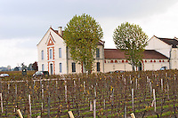 Vineyard & winery. Chateau Grand Barrail Lamarzelle Figeac. Saint Emilion, Bordeaux, France