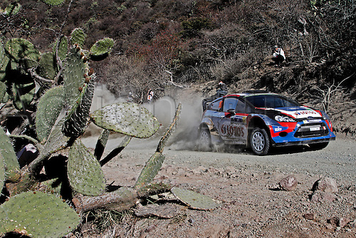 06.03.2014. GUANAJUATO, Mexico. The World Rally Championships (WRC) of Mexico.  Robert Kubica (POL)- SZPA (POL)- Ford Fiesta WRC