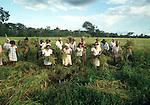mutirão de trabalhadores rurais pequenos proprietários, ex posseiros na cooperativa rural de Campos Altos em Conceição do Araguaia no Sul do Pará.1992