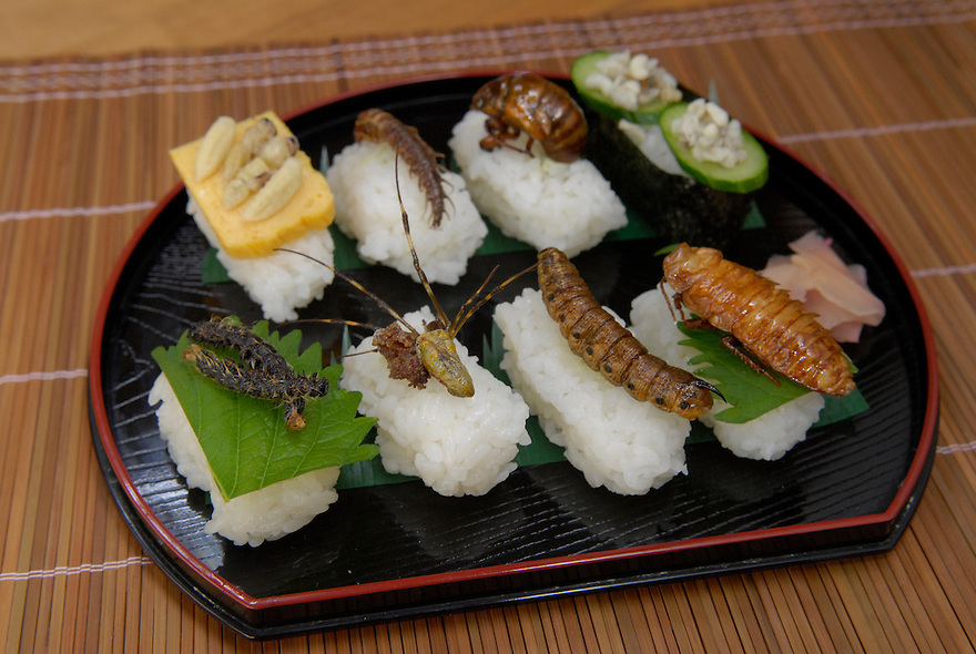 "A selection of insect sushi. From front left to back right: sakura moth caterpillar; joro spider; privet-hawk moth larva; Madagascar cockroach; Asian hornet larvae; dobson fly larva; Japanese cicada; green tree ant larvae.Tokyo resident Shoichi Uchiyama is the author of ""Fun Insect Cooking"". His blog on the topic gets 400 hits a day. He believes insects could one day be the solution to food shortages, and that rearing bugs at home could dispel food safety worries."