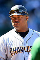 Manager Julio Mosquera (29) of the Charleston RiverDogs in a game against the Greenville Drive on Sunday, April 29, 2018, at Fluor Field at the West End in Greenville, South Carolina. Greenville won, 2-0. (Tom Priddy/Four Seam Images)