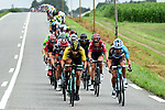 The peloton during Stage 12 of the 104th edition of the Tour de France 2017, running 214.5km from Pau to Peyragudes, France. 13th July 2017.<br /> Picture: ASO/Alex Broadway | Cyclefile<br /> <br /> <br /> All photos usage must carry mandatory copyright credit (&copy; Cyclefile | ASO/Alex Broadway)