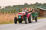 Tractor pulls a load of logs on a trailer on the highway, Serbia..Early 21st century Jinma JM 554 tractor (Chinese made)