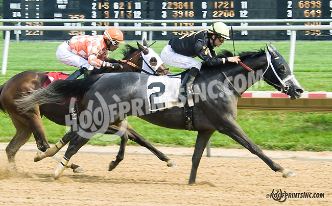 White Clover winning at Delaware Park on 5/16/15