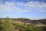 Israel, Mount Carmel after the big forest fire