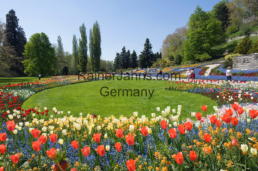 DEU, Deutschland, Baden-Wuerttemberg, Bodensee: Insel Mainau, Blumeninsel und groesste touristische Attraktion am Bodensee | DEU, Germany, Baden-Wuerttemberg, Lake Constance: Mainau Island, Flower Island and greatest tourist attraction at Lake Constance