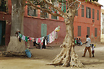 Africa, Afrika, Senegal, 17-09-2011, Dakar, Dakkar, Voor de kust van Dakar ligt het voormalige slaveneiland Isle de Goré. ( Goeree, uit het Nederlands) Tijdens de slavenhandel geregeerd door Nederlanders, en later over genomen door de Fransen.. Ook dit eiland staat op de UNESCO wereld erfgoed lijst. Wasgoed hangt te drogen tussen twee Baobab of apebroodboom... foto: michael Kooren/HH