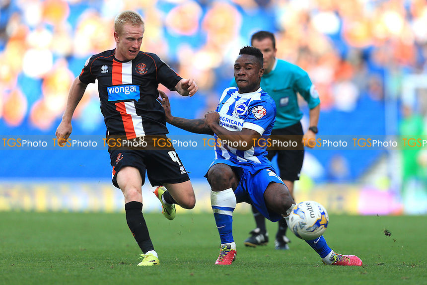 Kazenga LuaLua of Brighton & Hove Albion with a through ball - Brighton & Hove Albion vs Blackpool - Sky Bet Championship Football at the American Express Community Stadium, Falmer, Brighton - 20/09/14 - MANDATORY CREDIT: Simon Roe/TGSPHOTO - Self billing applies where appropriate - contact@tgsphoto.co.uk - NO UNPAID USE