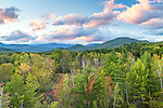 Fall foliage at Intervale in the White Mountain National Forest, New Hampshire, USA