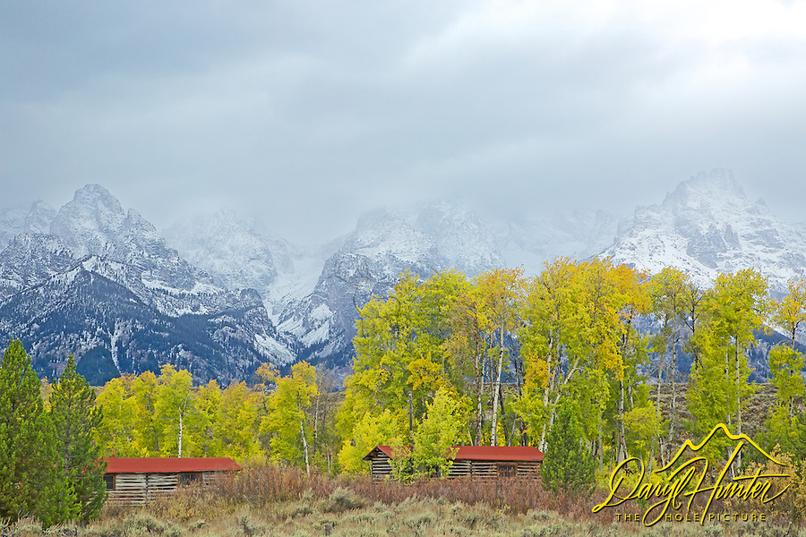 Autumn colors and a storm at the old Bar BC Ranch in Jackson Hole Wyoming. This original ranch was deserted after an expansion of Grand Teton Park.