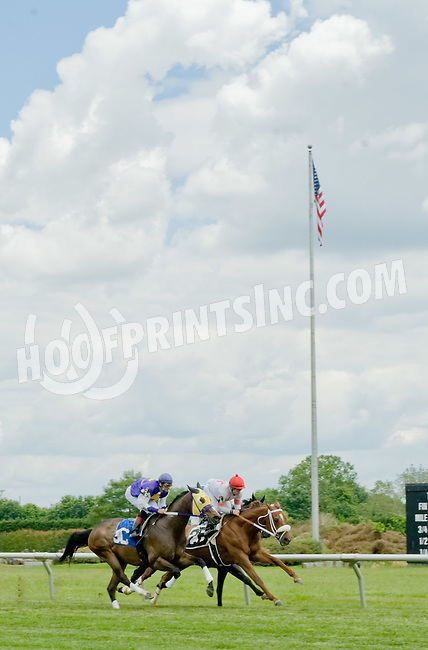 Lodo Del Norte winning at Delaware Park on 6/6/12