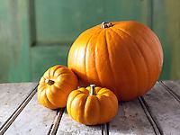 Fresh whole Mini & large orange pumpkins