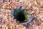 Looking down into a stoned lined dug well at an abandoned farmstead at Thornton Gore in Thornton, New Hampshire during the autumn months. Thornton Gore was the site of an old hill farming community that was abandoned during the 19th century. Based on an 1860 historical map of Grafton County this is believed to have been the J. Merrill farmstead. Today, this well is still about 20-25 feet deep.