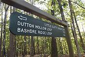 Bashore Loop Trail