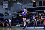 Molly Livingston (22) of the High Point Panthers serves against the Liberty Flames at the Millis Athletic Center on September 23, 2016 in High Point, North Carolina.  The Panthers defeated the Flames 3-1.   (Brian Westerholt/Sports On Film)