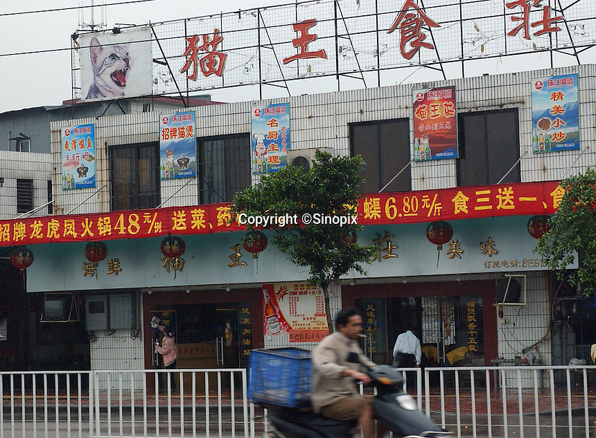 The King of Cat Restaurant in Guangzhou, China.