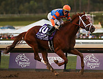 November 2, 2019: Vino Rosso, ridden by Irad Ortiz, Jr., wins the Longines Breeders' Cup Classic on Breeders' Cup World Championship Saturday at Santa Anita Park on November 2, 2019: in Arcadia, California. Casey Phillips/Eclipse Sportswire/CSM