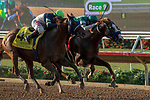"""DEL MAR, CA  AUGUST 24: #7 Catalina Cruiser, ridden by Flavien Prat, and #4 Giant Expectations, ridden by Drayden Van Dyke, in the stretch of the Pat O'Brien Stakes (Grade ll) """"Win and You're In Breeders' Cup Dirt Mile Division"""" on August 23, 2019 at Del Mar Thoroughbred Club in Del Mar, CA.  ( Photo by Casey Phillips/Eclipse Sportswire/CSM)"""