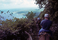 Descending to the leper colony on the Kalaupapa peninsula in Molokai in 1995 with the Kalaupapa mule tours.