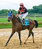 Conservationist winning at Delaware Park on 9/1/16