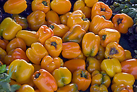 "Yellow bell peppers (""sweet pepper"") Capsicum, Farm-fresh"