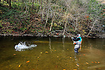 Tom Harris fly fishing in northeast PA
