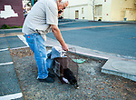 Ray Zeeb volunteer for H.A.R.P. (Homeless Animal Response Program)returns a previously trapped cat that has now been spayed/neutered and vaccinated to its' outside home area in Antioch, California on Saturday, March 22, 2014.  Photo/Victoria Sheridan