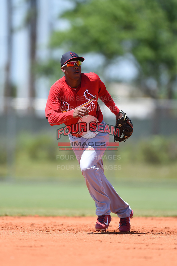 St. Louis Cardinals Cesar Valera during a minor league spring training game against the Miami Marlins on March 31, 2015 at the Roger Dean Complex in Jupiter, Florida.  (Mike Janes/Four Seam Images)
