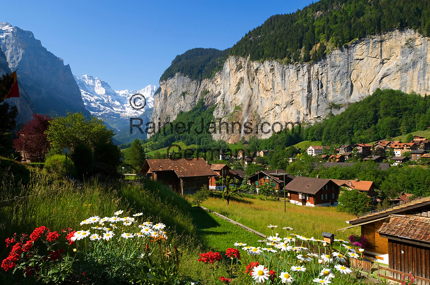CHE, SCHWEIZ, Kanton Bern, Berner Oberland: Lauterbrunnen mit Staubbachfall vorm Breithorn (3.782 m) | CHE, Switzerland, Bern Canton, Bernese Oberland: Lauterbrunnen with Staubbach waterfall and Breithorn mountain (12.409 ft.)