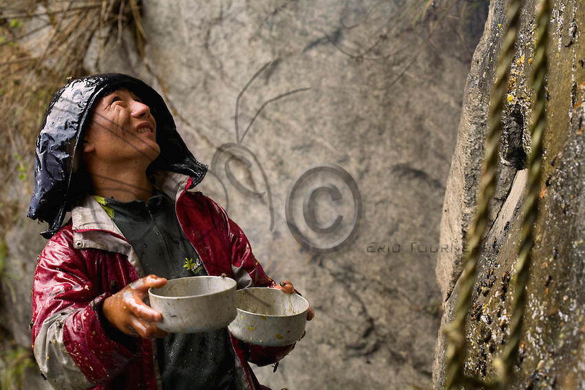 The village community chief, hands and face swollen from bee stings, attempts to collect the precious gold fluid oozing over the sheer rock face.