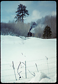 Train coming out of Chama past Jukes tree.<br /> D&amp;RGW  Chama, NM