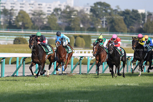 (L-R) Persian Knight ( Mirco Demuro), Divine Code (Yoshitomi Shibata), Jo Strictly (Yutaka Take), Red en Ciel (Suguru Hamanaka), Vous Etes Jolie (Yuga Kawada),<br /> FEBRUARY 25, 2017 - Horse Racing :<br /> Persian Knight ridden by Mirco Demuro wins the Arlington Cup at Hanshin Racecourse in Hyogo, Japan. (Photo by Eiichi Yamane/AFLO)