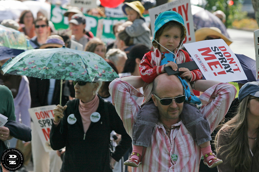 """Ella Gold Wade, 3, sits on her father Christopher Wade's shoulders during a march sponsored by the """"Mothers of Marin Against The Spray"""" from Corte Madera Town Center to Corte Madera town park on Saturday, May 10, 2008.  They were protesting against the state of California's proposed pesticide spraying in Marin and the Bay Area to combat the light brown apple moth.  They are both from San Francisco.  The moth could possibly threated the states agriculture industry.  Parents are worried that the spraying will have severe health effects for their children."""