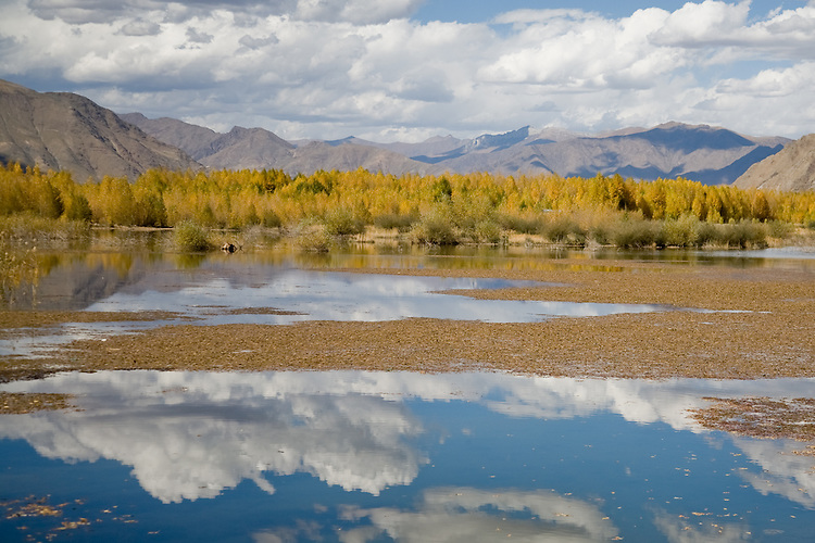 Fall scenes near Lhasa, Tibet