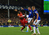 23rd  November 2019; Goodison Park , Liverpool, Merseyside, England; English Premier League Football, Everton versus Norwich City; Alexander Tettey of Norwich City blocks the shot of Gylfi Sigurdsson of Everton  - Strictly Editorial Use Only. No use with unauthorized audio, video, data, fixture lists, club/league logos or 'live' services. Online in-match use limited to 120 images, no video emulation. No use in betting, games or single club/league/player publications